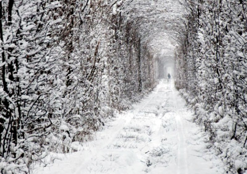 Tunnel-of-Love-in-Klevan-Ukraine-in-Winter